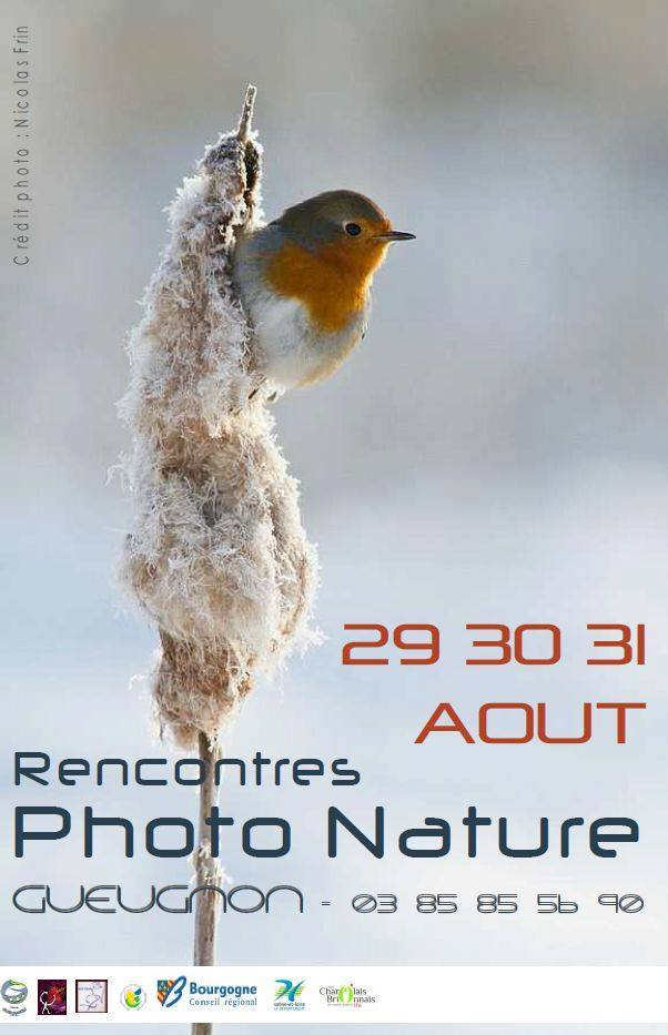 Rencontres Photo Nature Gueugnon 2014